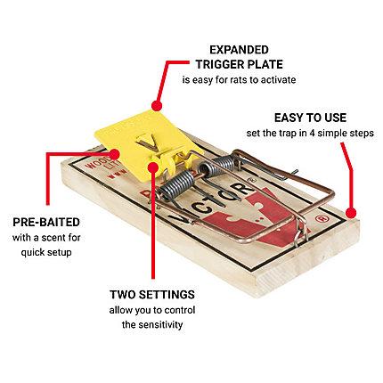 Easy Set Rat Trap